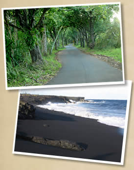 Puna's scenic Hwy 132 and Kehena black sand beach